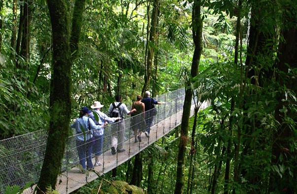 Hanging bridges project in Arenal, Costa Rica.