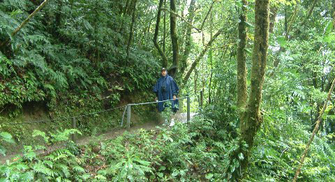 Bill Hatch walking the Hanging Bridges trails in Arenal, Costa Rica.