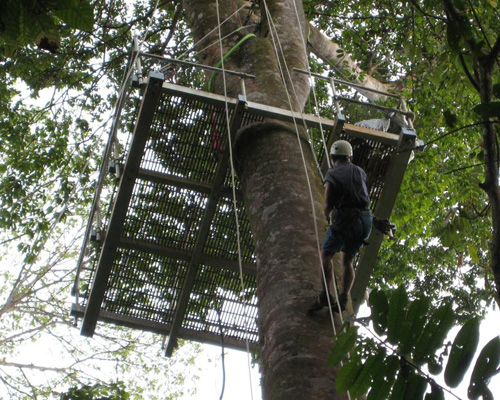 Corcovado Lodge's canopy tree platform in Costa Rica.