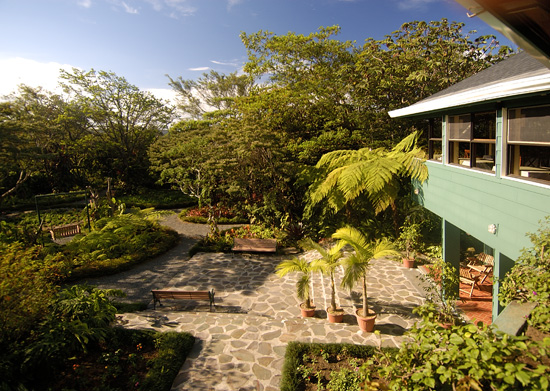 Gardens at Monteverde Lodge.