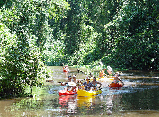 Kayaking tour in Tortuguero National Park.