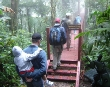 Hiking in Monteverde