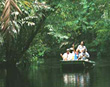 Rainforest boat tour