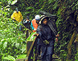 Cloud forest tour