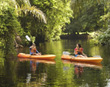 Kayaking in Tortuguero