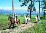 Horseback Riding Costa Rica Expeditions